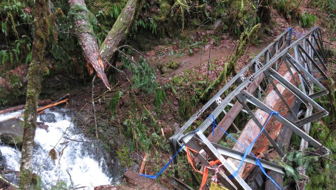 A bridge over Tish Creek on Eagle Creek Trail in the Columbia River Gorge was damaged by a falling tree. The bridge likely won't be replaced for at least a year.