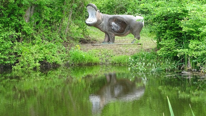 Archers will zero in on this life-sized hippo target this weekend during the Rinehart R100 archery shoot at the Coshocton County Sportsman's Association.
