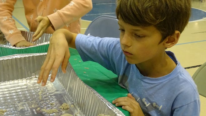 Luke Hoelzle, 8, works with kinetic sand at the KidsCollege fun day Friday at Terra State Community College.