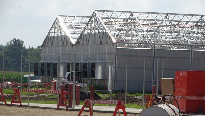 Work continues on Standard Wellness' medical marijuana cultivation facility in Gibsonburg, with construction expected to be complete by October, according to Standard Wellness CEO Erik Vaughan.