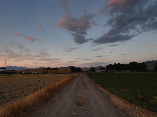 A road dividing fields is seen during sunset at the Moura Ranch near Lovelock on Aug. 9, 2015.