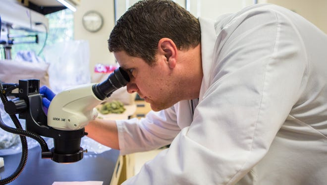 May 20, 2016: Forensic scientist Travis Worst analyzes evidence at the Ohio Bureau of Criminal Investigations lab in London, Ohio.