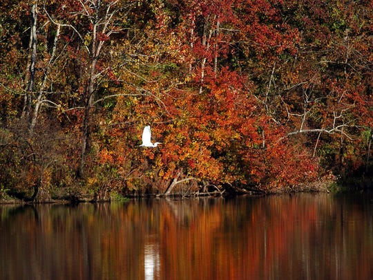 Camping is a great way to get out and enjoy the colors this fall.