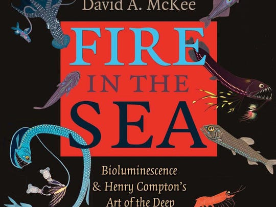 This book by David McKee with fanciful illustrations and text by Henry Compton provides readers a glimpse into the mind and enigmatic legacy of this longtime Oso Pier manager, closet artist, poet and career biologist with Texas Parks & Wildlife.