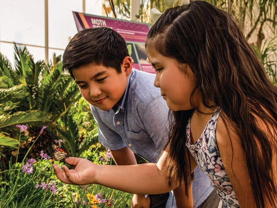 This grant will engage students (grades pre-K through 8) in immersive experiences that strengthen their achievement in STEM (science, technology, engineering and math), while nurturing an appreciation for our native Sonoran Desert.
