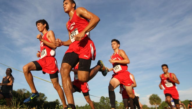The LaBelle boys' cross country team has high hopes heading into the Class 2A state meet on Saturday in Tallahassee.
