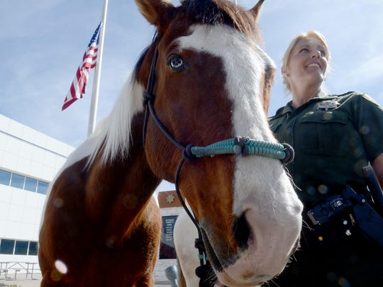A Washoe County Sheriff's Deputy stands by her horse,