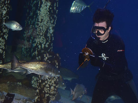 James Hill, aquarist at the Mississippi Museum of Natural Science, feeds various living species inside the 100,000-gallon aquarium.