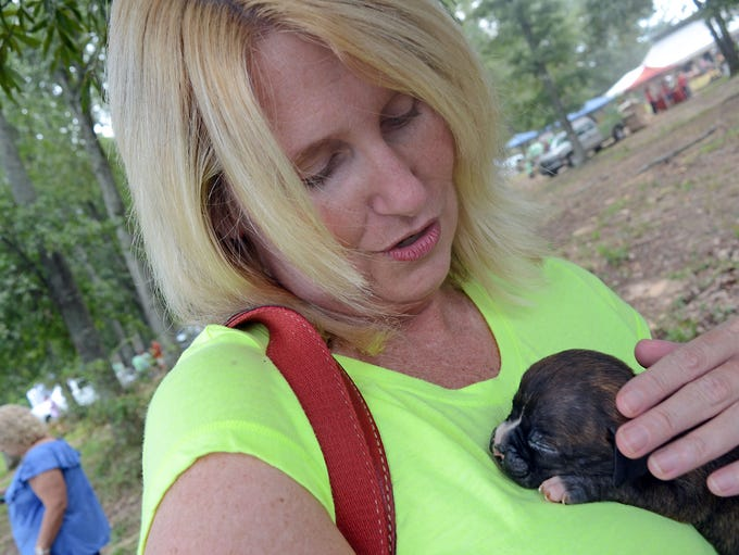 Michelle Black of Brandon holds Max,a 6-week-old boxer