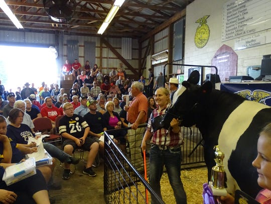Allyson Cook shows off her grand champion dairy steer