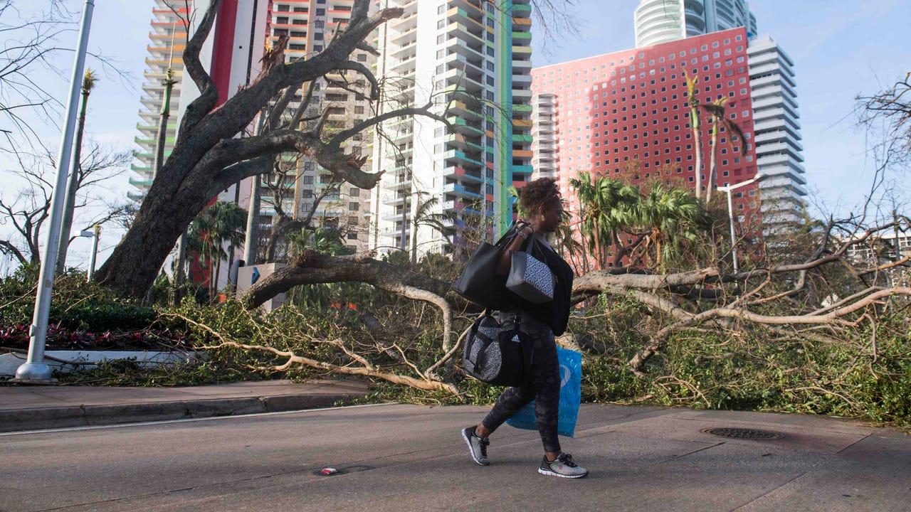Insurance industry avoids Irma catastrophe