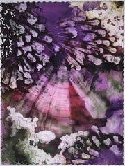 Marlene Yu Coral Reef Series