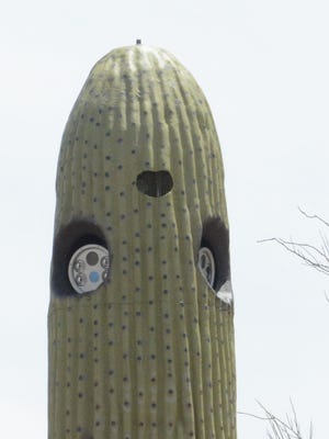 A close-up look at the cameras housed in steel cacti near Paradise Valley.