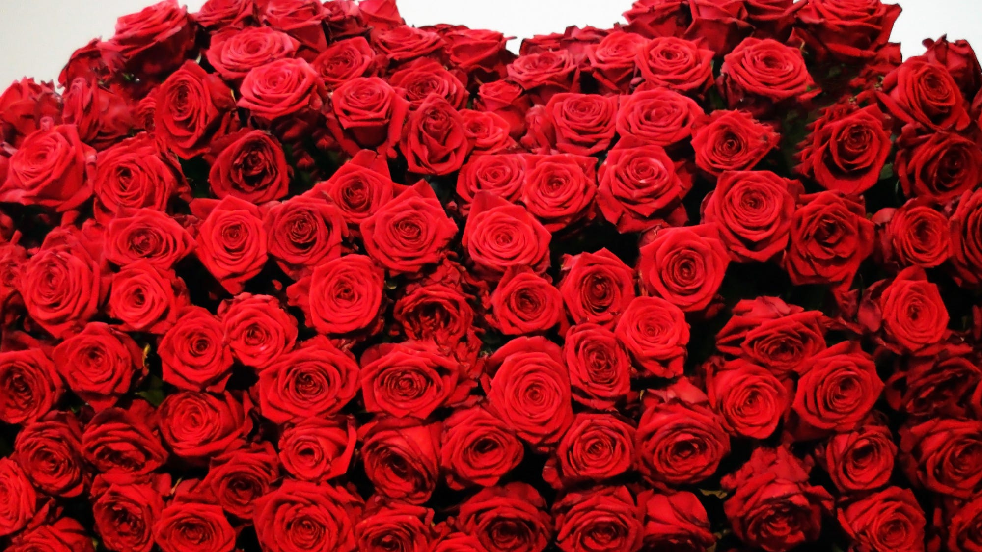 Ordering Mother S Day Roses Online Two Day Delivery Hard To Come By