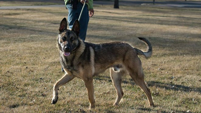 Neko is a member of the Tundra (Brown County) Drug Task Force.