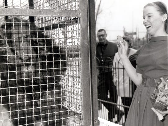 """The caption on this March 14, 1965, El Paso Times photo read: """"TRAINED CHIMP - Mrs. Joyce Gothard, secretary in City Parks and recreation department, is delighted when Neil, a chimpanzee at Washington Park Zoo, does a series of tricks at her verbal command. She rewards the chimp by giving him some bread."""" Neil was given to the zoo on condition he never be sold or traded."""