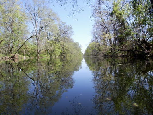 Canal-Spring.jpg