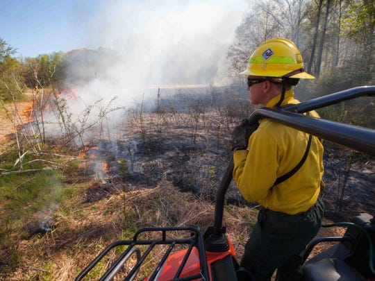 Kyle Hoyd, of the Delaware Forest Service, supervises a controlled burn at Blackbird State Forest near Townsend on April 29. State forestry crews each year target areas that seem most vulnerable to a wildfire.