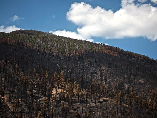 wildfire MAIN