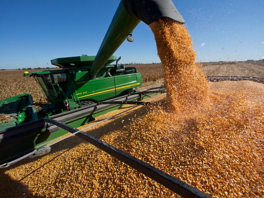 Aaron Schneckloth in the combine and John Jensen with the grain wagon harvest corn near Ankeny in 2011.