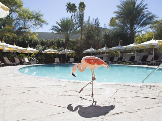 This photo taken at Parker Palm Springs is part of the Gray Malin at Parker series.