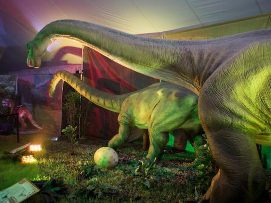 """Explore the mystery of prehistoric life with """"Discover the Dinosaurs,"""" a hands-on exhibit featuring moving and museum-quality replica dinosaurs."""