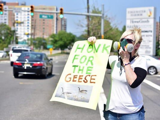 edgewater-geese-protest-052516.jpg