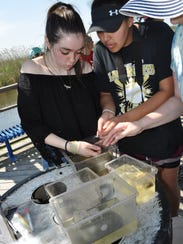 Students test the brackish water of the Meadowlands