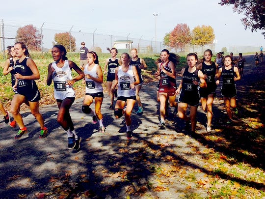 Waynesboro's Zhanee Fickling, second from left, works through the pack at the Conference 29 cross country championships at the Rockingham County Fairgrounds on Tuesday.