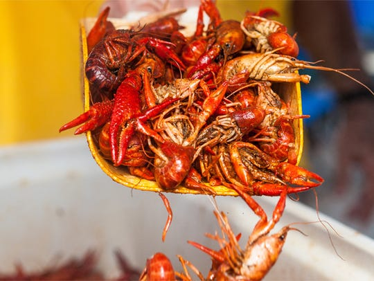 Boiled crawfish are one of Louisiana's most popular