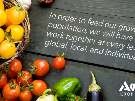 WSF-World-Food.jpg