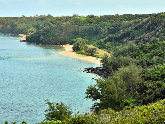 Zuckerberg_land_Hawaii
