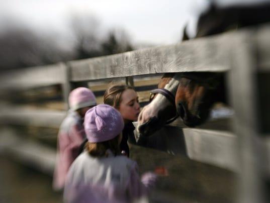 636407339971853332-horses.jpg