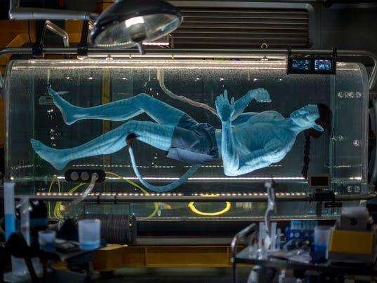 Avatar Flight of Passage on Pandora - The World of Avatar at Disney's Animal Kingdom