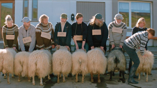 """""""Rams,"""" from Iceland, is a film Artistic Director Helen du Toit says you shouldn't miss."""