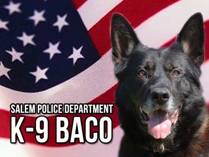 Salem police K-9 Baco