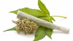 Asheville man arrested on marijuana charges