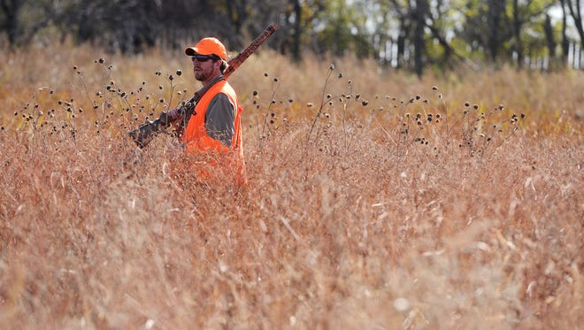 Tyler Garry walks through a slough while hunting for pheasants on opening day, Saturday with family on their farm near Salem.