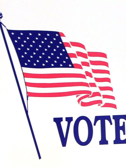 -Webart AND voting.jpg_20140529.jpg