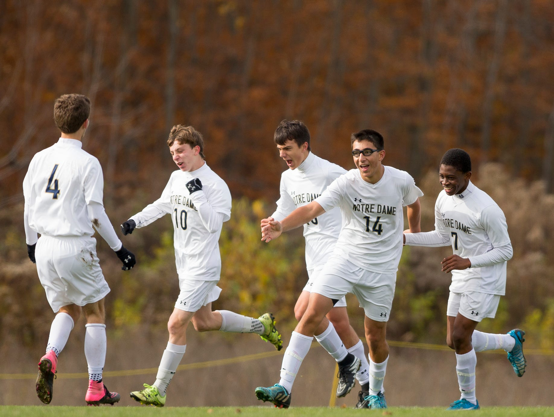 Notre Dame players celebrate their first goal on their way to winning the Section IV Class C soccer championship Saturday in Oneonta. From left, Nick Steed, Michael Woglom, Connor Bayne, Aidan Sharma, and Rocco Coulibaly.