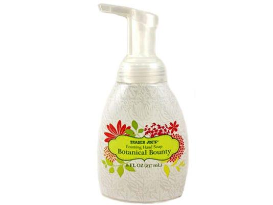635953862280613782-51387-botanical-foaming-hand-soap.jpg