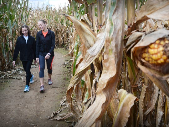 Several corn mazes are available in York, Adams and