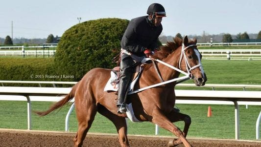 I'm a Chatterbox in training a Keeneland Race Course earlier this month.