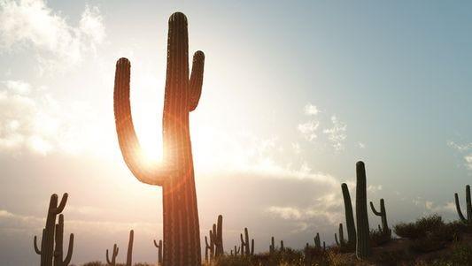 Aunque para muchos en Arizona el calorcito es agradable comparado con los meses de julio y agosto, la temperatura está mas álta de lo normal para el mes de octubre.