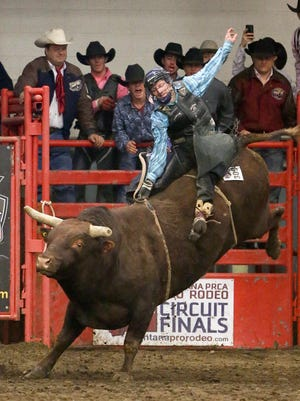 Guy Nordahl is among the bull riders who will be competing this weekend in Pacific Steel and Recycling Four Seasons Arena at the 39th annual Montana Pro Rodeo Circuit Finals unfolds.