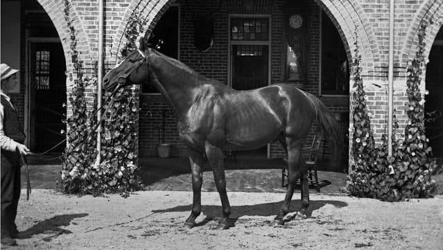 Tammany was Daly's most famous and most loved racehorse
