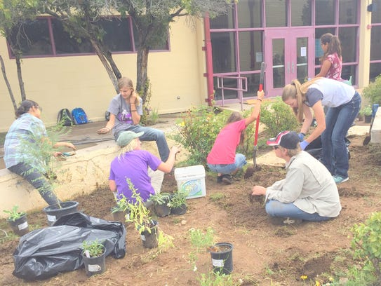 Students from Aldo Leopold High School helped plant