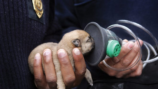 Pet oxygen masks, which fit snugly to the animal's snout, were donated to the Hendersonville Fire Department.