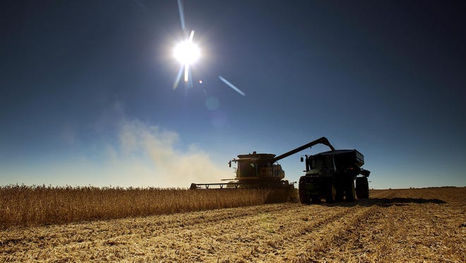 A combine harvests soybeans on a farm near Volin, S.D.