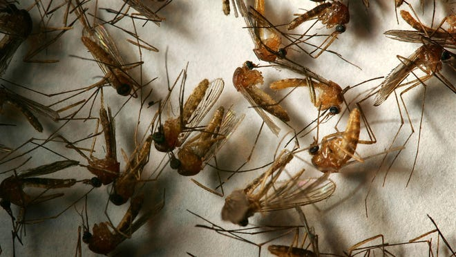 State health officials have confirmed the West Nile virus in a fifth Delawarean.